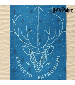 Handtuch Expecto Patronum...
