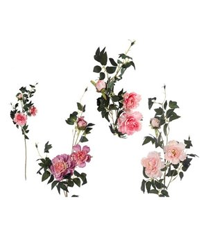 Dekorative Blume Pfingstrose 114424