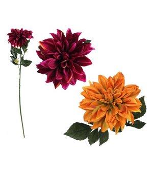 Dekorative Blume Dahlie 114431