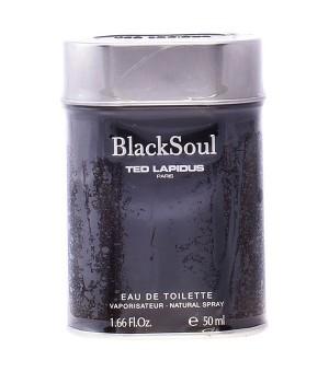 Herrenparfum Black Soul Ted...