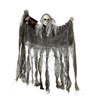 Hängendes Skelett (50 x 39 cm) Grau